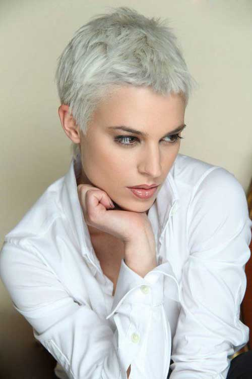 Pleasing Short Hairstyles For Gray Hair 2016 Short Hair Fashions Hairstyle Inspiration Daily Dogsangcom