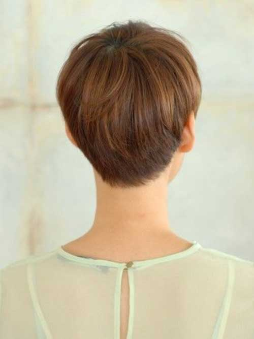 Long Pixie Hair Back View Pictures