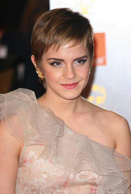 Short Brown Straight Pixie 2014-2015