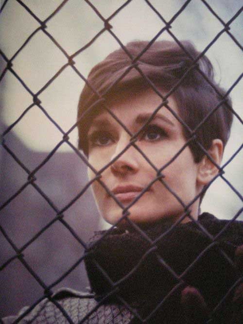 Audrey Hepburn Short Hair Pixie Cut