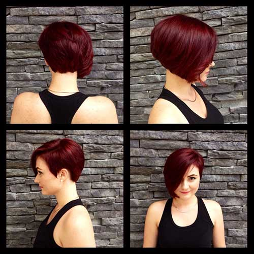 Pixie Bob Red Hair Color