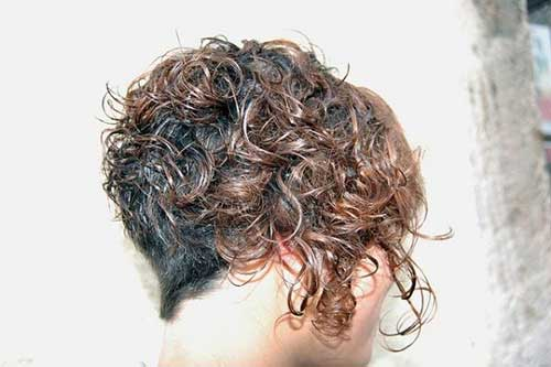 Curly Asymmetrical Pixie Hairstyles Back View