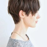 15 Best Brown Pixie Cuts 2014 – 2015