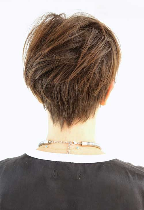 Medium Pixie Back View Look